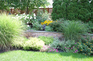 a landscape created by our Sugar Land TX experts